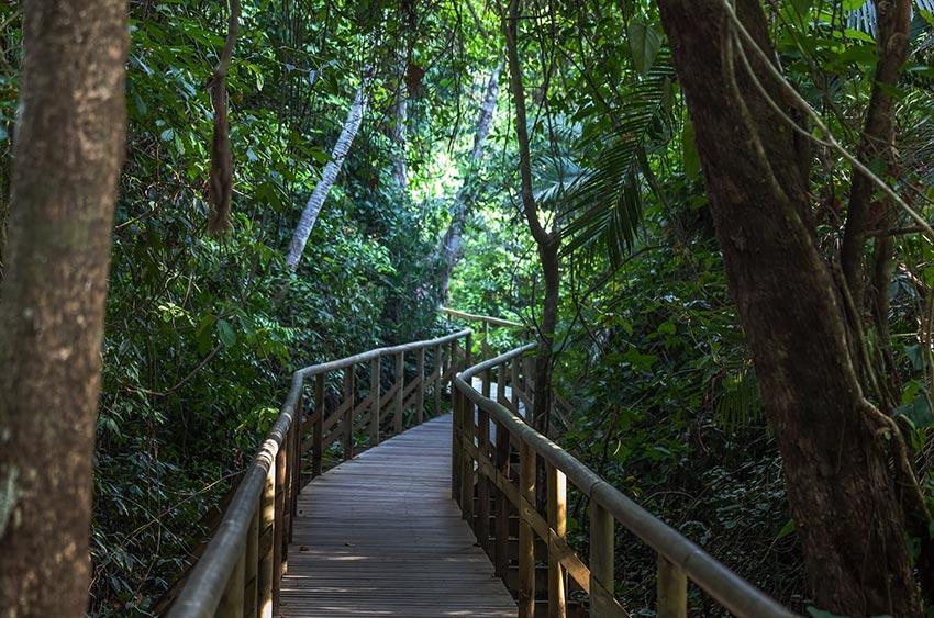 Day tour in Manuel Antonio National Park