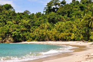 Manuel-Antonio-National-Park-Hike-1576699264